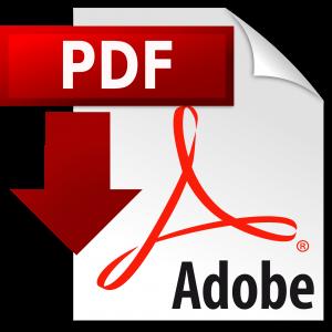 pdf icon copy